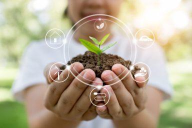 plantar-arboles-e-innovacion-salvar-mundo_28629-1132